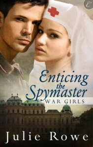 Enticing the Spymaster – Julie Rowe – 4 stars